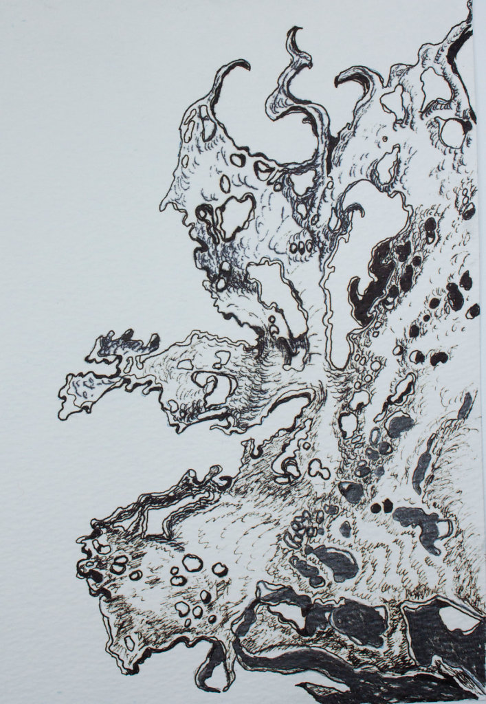 FRAGMENTS-pencil-and-ink-drawing-size-A52015-1-2.jpg