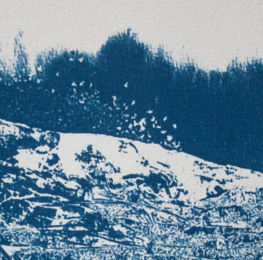 Vacated-Landscape-II.jpg
